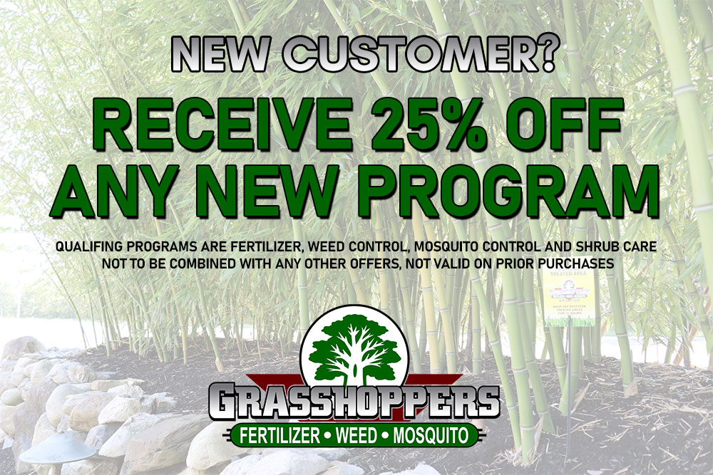 New Customers Receive 25% Off